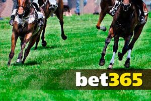 the Best Horse Racing Betting Offers  at Bet365